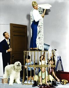 Still of Doris Day and David Niven in Please Don't Eat the Daisies