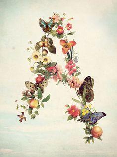 Letra a , flores portal