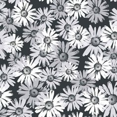 Black White Bt2738 Daisy Camo Wallpaper By York