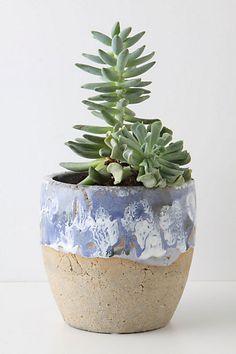 earthenware, glossy