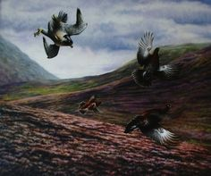 Birds Of Pray  Original Oil  Available here in the North East Art Collective Eldon Garden Newcastle