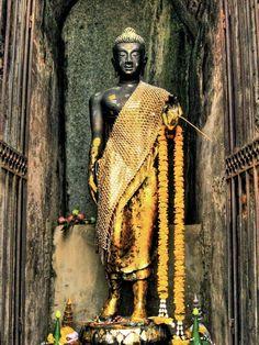 golden Thai Buddha and offerings (by Takuji Takahashi)    (via wellearnedsoul)