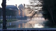 Un matin brumeux à la Ferté-Saint-Aubin...