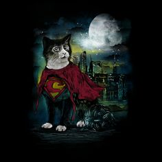 Super Cat - NeatoShop