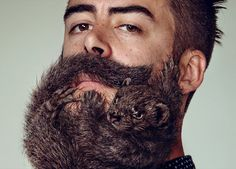 Y&R grow animal beards for schick's free your skin campaign
