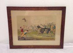 Bull baiting Antique Dog Print Henry Alken 1820 Bull Terriers British Sports