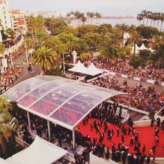 #redcarpet #Cannes2015 #leonorgreyluk #leonorgreyl #glamourous #hair #natural products
