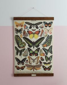 DIY Vintage Poster Frame for Greta's Butterflies | Chris Loves Julia
