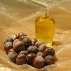 Pecan oil -- a carrier oil. Oil Treatment For Hair, Infused Oils, Carrier Oils, Natural Essential Oils, Hair Oil, Pecan, Bath And Body, Health And Beauty, Fragrance