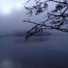 Новгородская. Туман