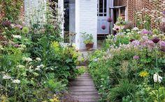 Small gardens tips - Gardens Illustrated Small Courtyard Gardens, Back Gardens, Terrace Garden, Small Gardens, Outdoor Gardens, Walled Garden, Small English Garden, Narrow Garden, Small Garden Inspiration