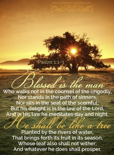 Blessed is the man Who walks not in the counsel of the ungodly, Nor stands in the path of sinners, Nor sits in the seat of the scornful; But his delight is in the law of the Lord, And in His law he meditates day and night. He shall be like a tree Planted by the rivers of water, That brings forth its fruit in its season, Whose leaf also shall not wither; And whatever he does shall prosper. Psa 1:1-3 <3