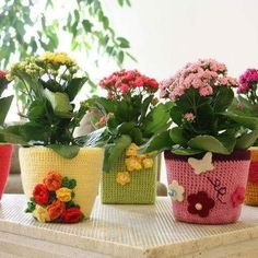 #crochet #crocheting #amigurumi #blanket #crochetblanket #loveit #instafoto #battaniye #knitstagram #etsy #bebekbattaniyesi #flowers #instadaily #instagood #like4like #likeforfollow #haken #handmade #haakverslaafd #virka #crochetaddict #hekle #more #virka #sjaal #shawl #instaknit #popsicle #knitting #instadaily by derintasarim_