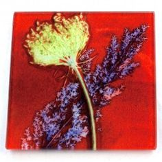 Gillian Arnold Red Layers Glass Coaster
