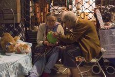 Barcelona: zwei alte Frauen sammeln mit ihren Katzen Geld für denTierschutz in Barcelona, Foto: Robert B. Fishman, 4.10.2014