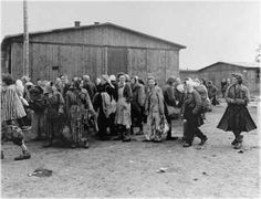 """Between 300 & 400 women were forced to become sex workers in brothels in ten concentration camps, including Auschwitz, Dachau, Buchenwald & Sachsenhausen. A visit to a brothel, known as a """"special barrack,"""" was part of a system of incentives intended to boost the productivity of concentration camp slave laborers. These bonuses were not; however, extended to every group of inmates – Jews in particular were excluded. The idea for the forced prostitution came from Heinrich Himmler himself."""