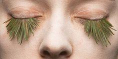 Mary Graham replaces false eyelashes with foraged plants.