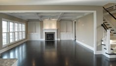 SW Mega Griege  Custom Floor Plan APS Family Room - traditional - family room - chicago - King's Court Builders, Inc.