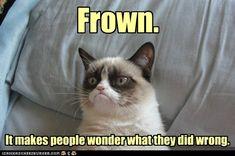 Grumpy Cat Advice