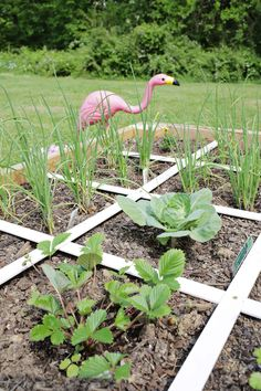 Make Your Own Raised Garden Bed in 4 Easy Steps! - A Beautiful Mess