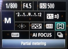 A professional photographer's settings for her Canon 7D and 5DMII.  Good for Nikon users too!