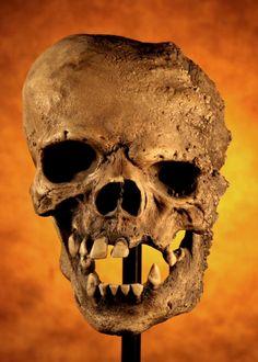 Quasimodo Skulls