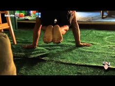 How to Planche Tutorial- Training Tuck Planche Pushups Progression Workout - YouTube
