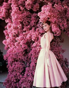 Audrey Hepburn: Portraits of an Icon @ The National Portrait Gallery 2 July – 18 October. London