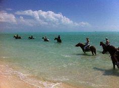 Ride horses on the beach