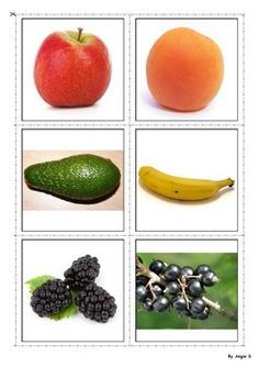 Fruit Vocabulary Cards for Special Education Speech Therapy ESL Language Activities, Reading Activities, Preschool Activities, Esl Resources, Teacher Resources, School Resources, Teaching Kindergarten, Teaching Ideas, Healthy Prepared Meals