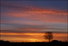 Morning Sky by adrians_art on Flickr - Photo Sharing!