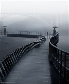 river path in the rain and the fog