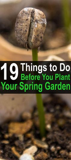 19 Things to Do Before You Plant Your Spring Garden. At this point in the winter, outdoor gardening can seem like a distant memory. However, there are many tasks you can and should start doing right now to gear up for a great spring garden. Here's our checklist of 19 things to do before you plant your spring garden. | Posted by: SurvivalofthePrepped.com