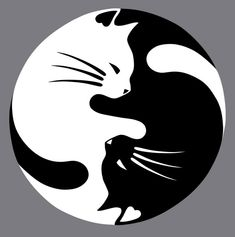 Yin Yang lucky cat tattoo - this would be nice with a watercolor wash instead of black CAT AND DOG YING YANG Yin Yang Tattoos, Tatuajes Yin Yang, Crazy Cat Lady, Crazy Cats, Lucky Cat Tattoo, Tattoo Cat, Tiny Tattoo, Art Rupestre, Art Pierre