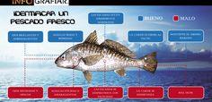 Como identificar un pescado fresco