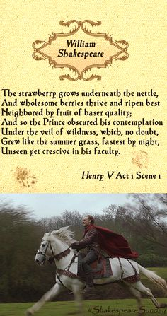 """The strawberry grows underneath the nettle, And wholesome berries thrive and ripen best Neighbored by fruit of baser quality; And so the Prince obscured his contemplation Under the veil of wildness, which, no doubt, Grew like the summer grass, fastest by night, Unseen yet crescive in his faculty."" — Henry V Act 1, Scene 1 #ShakespeareSunday"