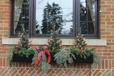 Holiday window box with artificial and natural greens mixed together.