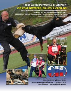 2015 ADRK IPO World Champion Cid vom Rottberg, BH, IPO 3, CACIT FCI 2015 - ADRK Internationaler Großer Preis von Rottweil (1st place) 2014 - IFR IPO World Championships - 3rd place 2014 ADRK IPO World Championships - Best Protection HD ± ED-Frei (RKF)  Dago vom Türnleberg II x Cira vom Kinzigtal  Available for stud Frozen semen shipped world wide  Dmitry Dudukin Moscow, Russia Cid-Vom-Rottberg@outlook.com +7(916)683-0475  Fluent in Russian. I also speak English & French
