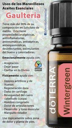 Doterra Wintergreen, Doterra Essential Oils, Melaleuca, Essential Oil Bottles, Best Essential Oils, Essential Oil Uses, Doterra Blends, Diffuser Blends, Herbs