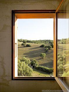 Fenêtre sur jardin #dccv #ducotedechezvous #light #skylight #lumière #puit #home #interior #inspiration #maison