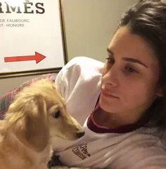 Don't yawn around this dog. OHMYGODD.