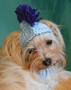 4b1a6104bf0 Crocheted Mohawk Cat Hat, Mohawk Dog Hat, Punk Rocker Cat or Dog Hat,  Halloween Costume