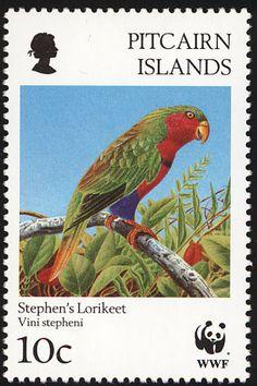 Islas Pitcairn 1996 -  El Lorito de Stephen,es endémico de las islas Pitcairn.