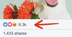 22Useful Facebook Tips That Most People Know Nothing About