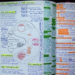 Note taking tips and strategies from a University of South Carolina School of Medicine Greenville med student.