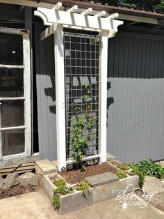 Check out 14 DIY Ideas For Your Backyard | DIY Garden Trellis by DIY Ready at http://diyready.com/14-diy-ideas-for-your-backyard-as-seen-on-yard-crashers/