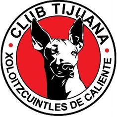 Club Tijuana Xoloitzcuintles de Caliente - México