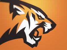 Tiger 3 by Fraser Davidson