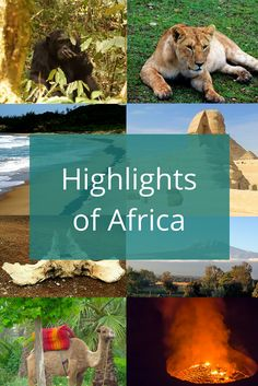 A collection of traveler's favorite destinations within the African continent. To be used as travel inspiration for your next trip to Africa.