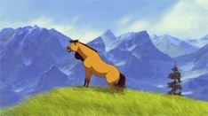 immagini di spirit cavallo selvaggio - Cerca con Google